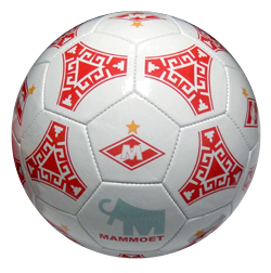 Мячи на заказ